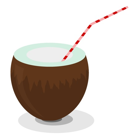 Illustration of coconut and a straw for cocktails Stock Vector - 13277604