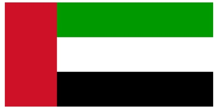 Vector illustration of the flag of  United Arab Emirates 