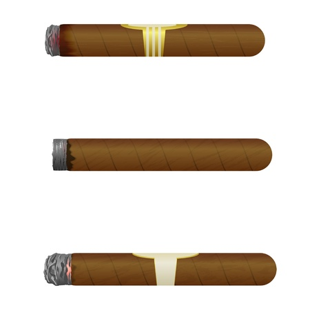 cuban cigar: Set of Cuban cigars. Isolate on white background.  Illustration