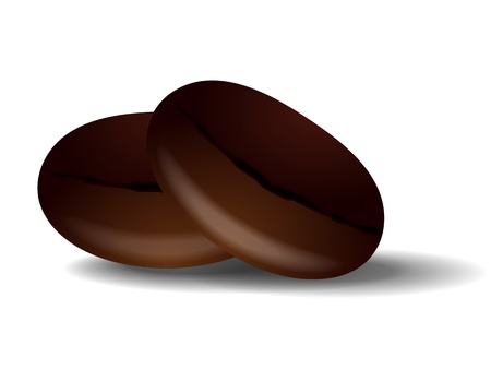 Two grains of roasted black coffee. Vector
