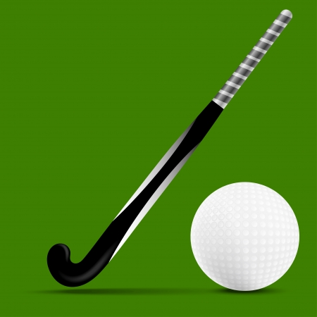 Stick and ball field hockey Vector