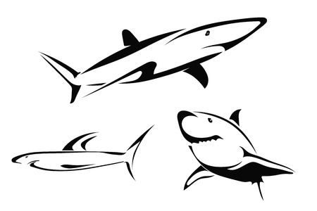 Set of vector drawings of sharks Vector