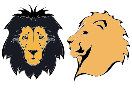 males: Cartoon lion heads Illustration