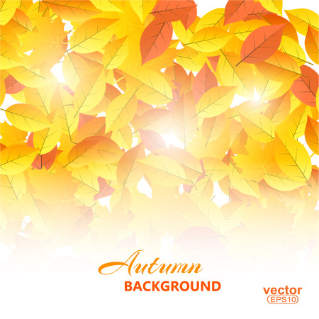 withering: Autumn background with leaves illustration. Illustration