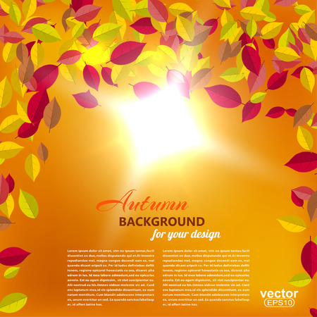 sun illustration: Autumn falling leaves on an orange background with the sun illustration. Illustration
