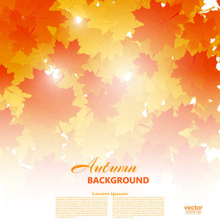 withering: Background on autumn theme of falling yellow and orange maple leaves illustration.