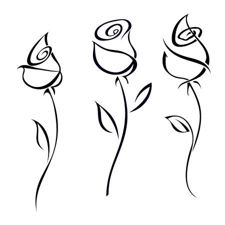 dessin noir et blanc: Rose fleurs isolé sur fond blanc illustration. Illustration