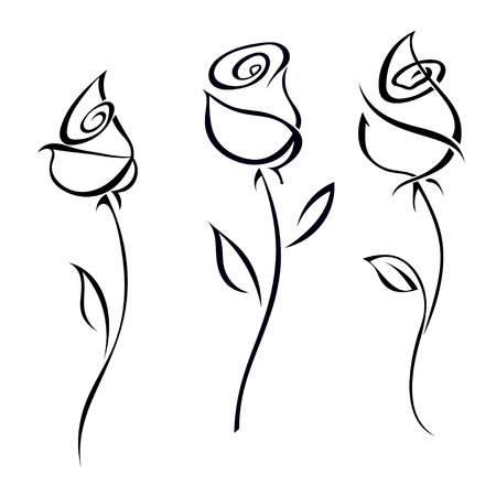 rosa negra: Rose flores aisladas sobre fondo blanco ilustración.