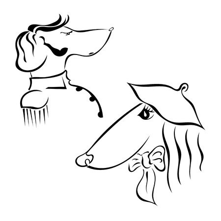 she: The couple breed dogs Greyhound. He and she. Hussars and the lady. Vector illustration. Illustration