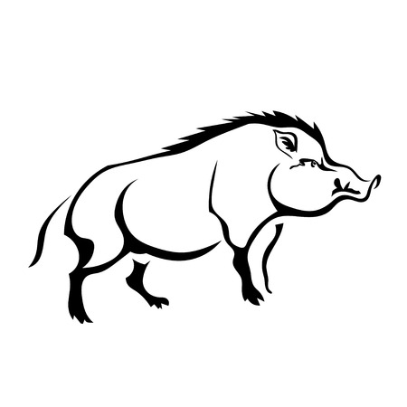 wild hog: Black silhouette wild boar on white background. Isolate. Vector illustration