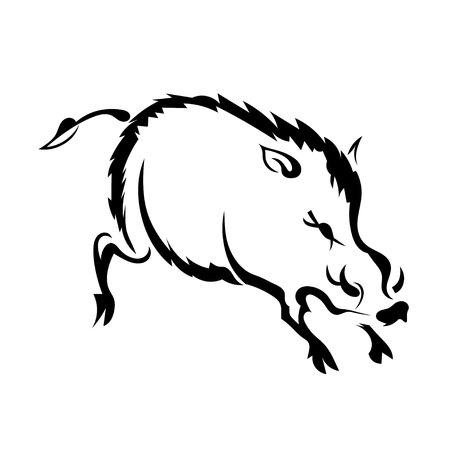 eber: Silhouette Wildschwein auf weißem Hintergrund. Isolieren. Vektor-Illustration