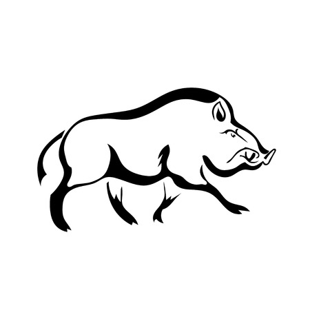 wild nature: Black silhouette  boar on white background. Isolate. Vector illustration