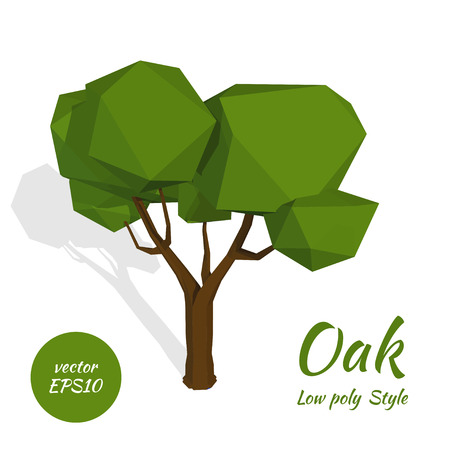 Image of green oak in low poly style on a white background. Vector illustration