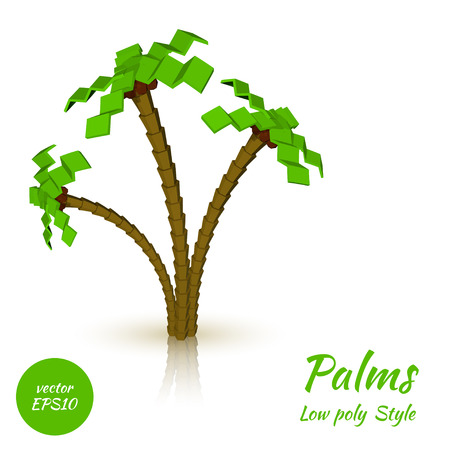 cartoon palm tree: Palm trees on a white background in the low poly style. Vector illustration