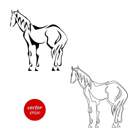 paddock: A set of silhouettes of horse from the back isolated on white background. Vector illustration.