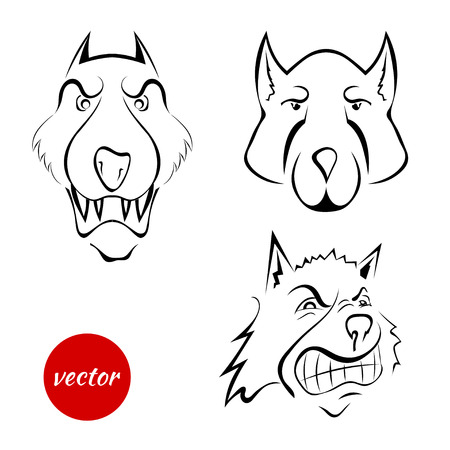 beware of the dog: Set the dogs muzzle, wolf isolated on white background. Cartoon. Beware the evil dog! Vector illustration.