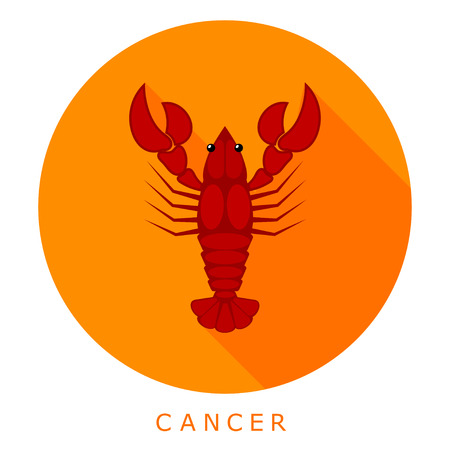arthropods: Red cancer on an orange background. Sleek style. Simple icon. Easy to edit and change color. Vector  illustration