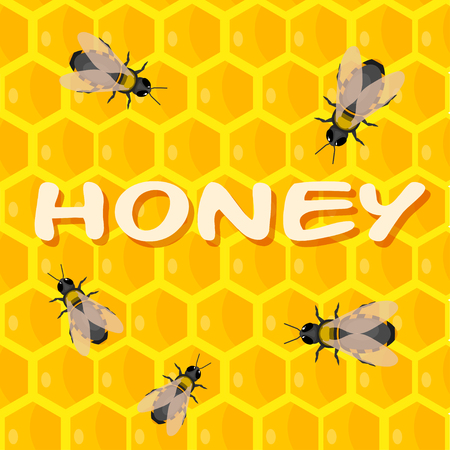 mead: Bees on honeycomb with honey. Cartoon style. Vector illustration Illustration