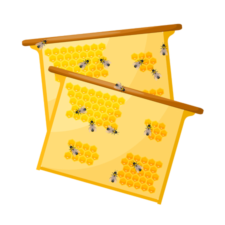 Worker bees on honey comb on a white background. Objects apiary. Vector honey production icon. Stock vector