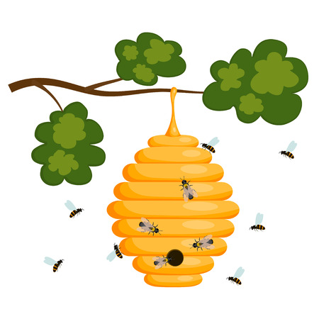 bee house: Yellow bee hive on a white background. Bee hive isolate. Stock Vector illustration of bee house with a circular entrance. Insect life in nature. Bees near the hive. Beehive in a tree branch.