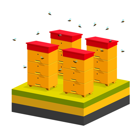 Isometric hives on schematic background of the earth. Vector apiary icon on green grass. Ecological concepts, healthy food. Apiary on the meadow, beehives, bee in isometric style. Stock vector