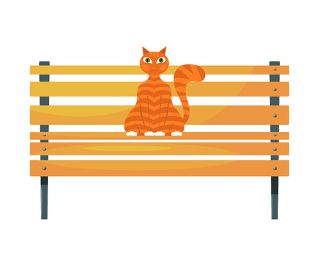 tabby cat: Red cat on the bench. Stock image of ginger tabby cat on a wooden park bench on a white  background. Stock vector illustration
