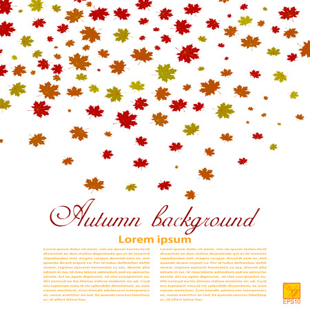 Autumn background. Illustration of falling red, yellow and green maple leaves. Image season. Maple leaves on a white background. design element, wallpaper. Autumn weather.