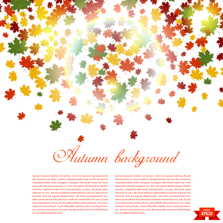 Autumn background and sunlight. Illustration of falling red, yellow and green maple leaves. Image season. Maple leaves on a white background. Autumn weather.