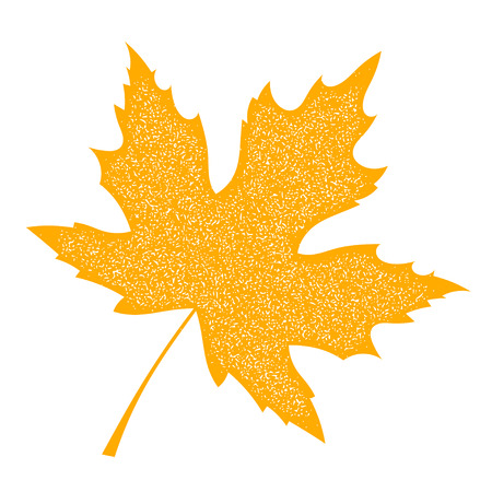 Yellow Maple Leaf with grange texture on a white background. Autumn maple leaf, a symbol  of autumn. Element of nature, flora. Stock vector illustration Illustration