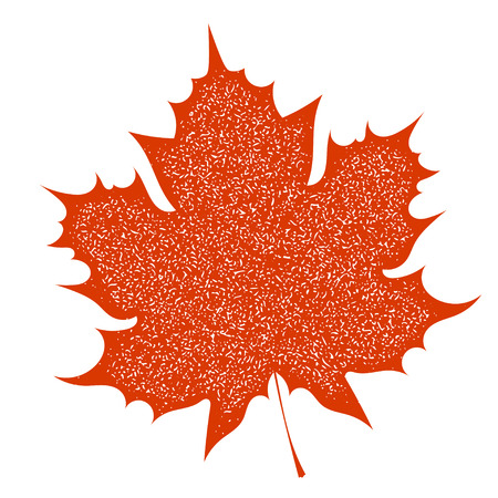 Maple Leaf with grange texture on a white background. Autumn red maple leaf, a symbol of autumn. Element of nature, flora. Stock vector illustration