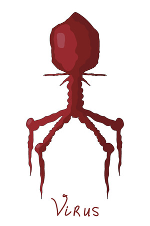 Vector illustration Cartoon red virus. Comic virus isolated on white background. Cartoon style. Microorganism biology nature