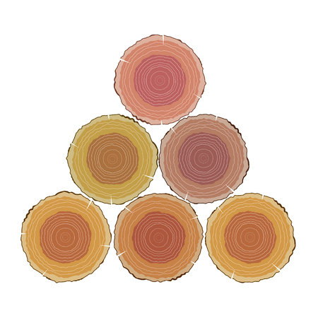 Vector illustration set of round cut wood with growth rings. The cut logs on a white  background. Isolated object. Tree rings, nature.