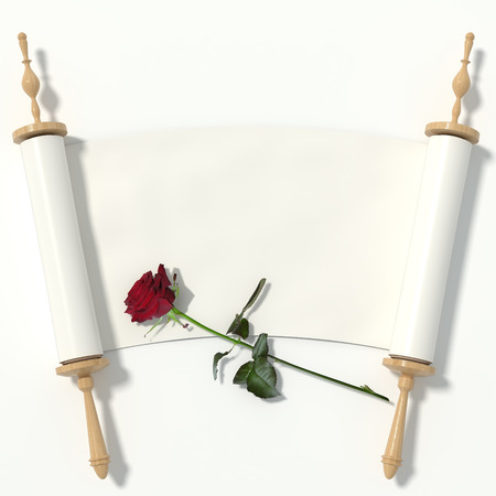 the scriptures: Scroll to the white paper on wooden rollers and a red rose, isolated on white background. 3d rendering.