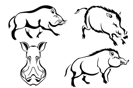 Set of black vector images of wild boars. Abstract drawings of wild boars in different poses. Vector illustration