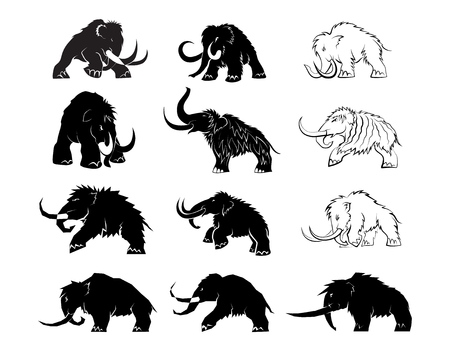 Set of black silhouettes of mammoths on a white background. Prehistoric animals of the ice age in various poses. Elements of nature and evolutionary development. Vector illustration