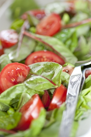 Close Up of salad with fresh tomatoes