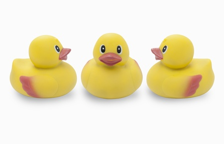 Studio shot of three yellow rubber ducks