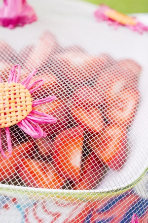Closeup of bowl with delicious strawberries protected by net . Set on a table in a garden on a sunny summer day.