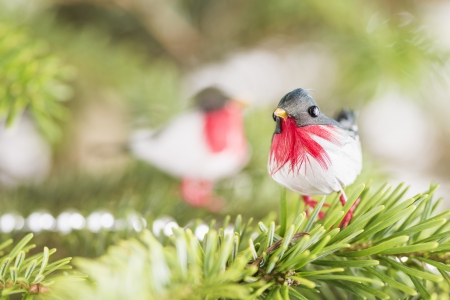 Closeup of decorative birds in christmas tree Stock Photo