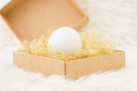 Single white egg packed in gift box