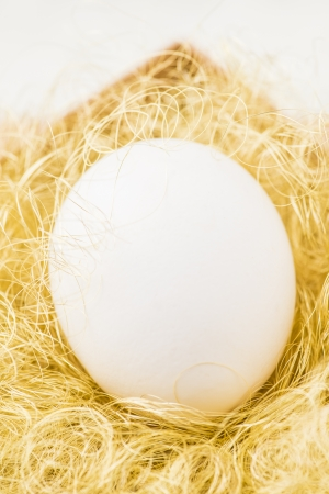 Single white egg packed in gift box