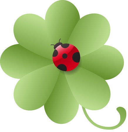 leafed: Four-leafed clover with ladybug Illustration
