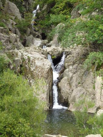 paysage: Ruisseau dans la nature - Creek in nature