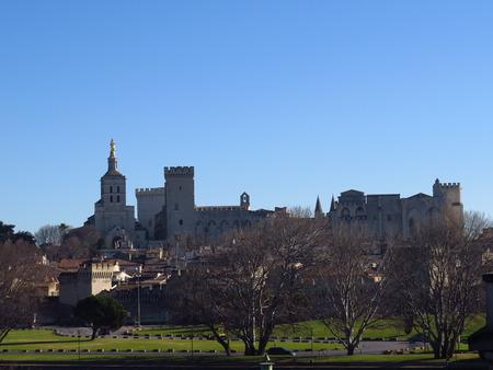 vue: Vue panoramique sur Avignon, le Palais des Papes et le Pont Saint-Benezet - Panoramic view of Avignon, the Papal Palace and the St. Benezet Bridge, France Editorial