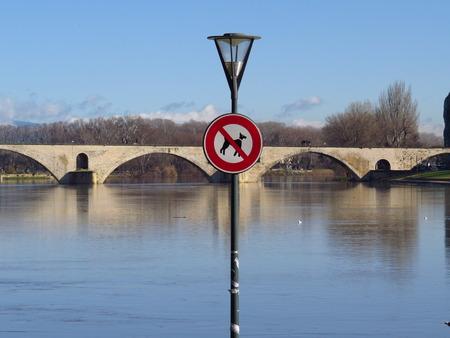 sud: Pont dAvignon interdit aux chiens ! - Avignon Bridge No dogs !
