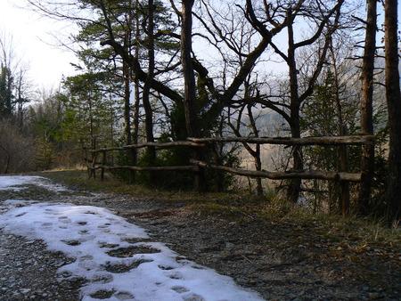 arbres: Barriere, cloture, garde-fous en bois ou metal