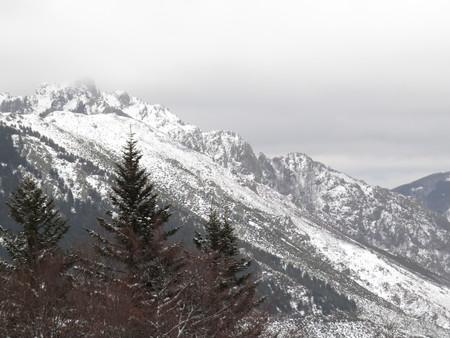 Neige dans la forêt, Croix de Bauzon, Ardèche Banque d'images - 49002449