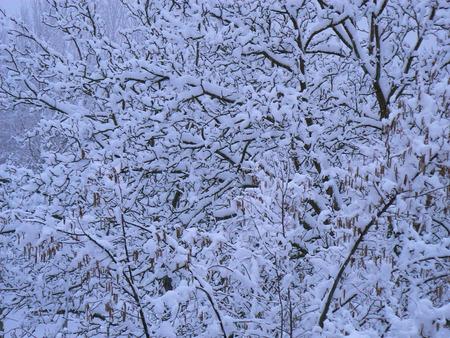 La neige d'hiver dans les montagnes des Alpes, France Banque d'images - 49265548