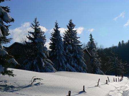 La neige d'hiver dans les montagnes des Alpes, France Banque d'images - 49265561