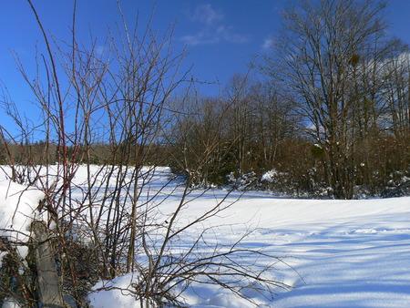 Scènes d'hiver dans les Alpes - scènes d'hiver dans les Alpes, France Banque d'images - 49265588